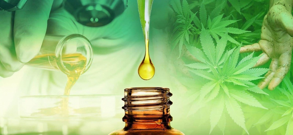 CBD oil and you