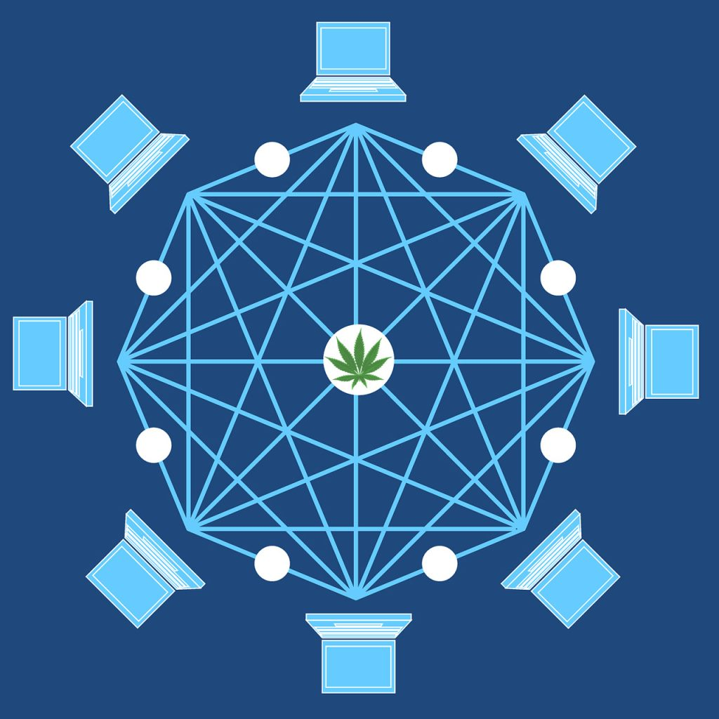 cbd italy blockchain