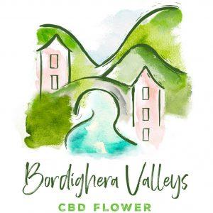 BV-logo-colour-correct